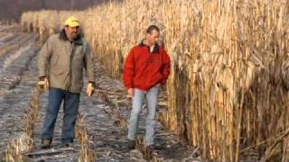 StollerUSA  - Enhanced Corn Yields With Bio-Forge®