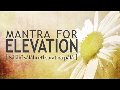Mantra for Elevation - Saalaahi Saalaah   DAY24 of 40 DAY SADHANA
