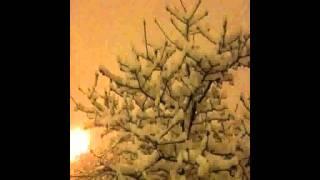 Beach House - I do not care for the winter sun (with lyrics)