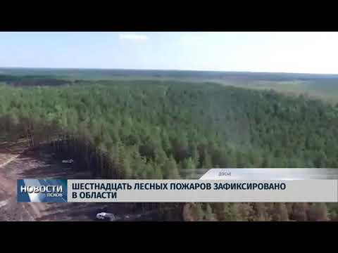 Новости Псков 13.08.2018 # За выходные в области зафиксировано 16 пожаров