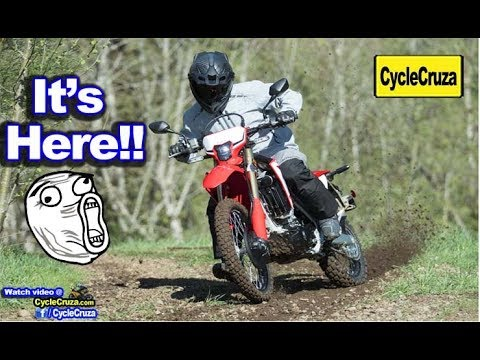ALL NEW 2019 Honda CRF450L – FAST Lightweight Dual Sport!