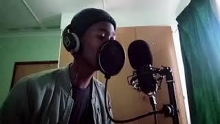 DJ Zinhle   Umlilo Ft. Mvzzle, Rethabile (cover By Sky Snyder)