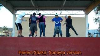preview picture of video 'Harlem Shake: Sonoyta version'