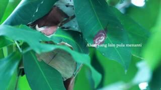Download lagu Hijjaz Pelita Hidup Mp3