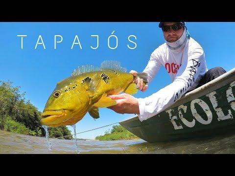 Great Fishing - Tapajós River - Amazon Brazil