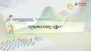 [국립생태원]05 바위에 실려 간 연오랑과 세오녀