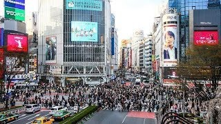 TOKYO Live Camera 24/7 // City Centre, Shibuya // 渋谷 交差点