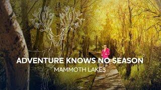 Adventure Knows No Season