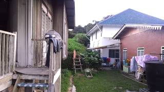 preview picture of video 'Residential Land next to Aszi Homestay, Taman Sedia, Tanah Rata, Cameron Highlands - part2'