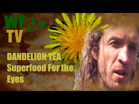 Video Dandelion Herb Tea: Dandelion is a Superfood for the Eyes