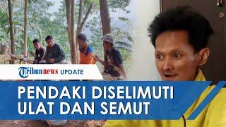 Pengalaman Aneh Pendaki Hilang di Gunung Geulis, Ditemukan di Daerah Angker Diselimuti Ulat & Semut