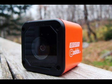 CaddX Dolphin Starlight 1080 Camera Review and Footage