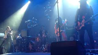 The Dandy Warhols  Motor City Steel  LIVE