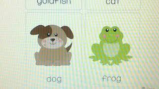 Pre-escolar - English Pets 08/21/20