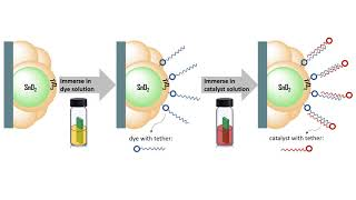 Newswise:Video Embedded tethered-chem-combos-could-revolutionize-artificial-photosynthesis
