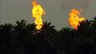 البشر و نشأت الأرض منذ البداية كما لم تشاهد من قبل