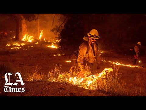 California department of forestry and fire protection, calfire, cal fire. All Out Fight To Save Lake Tahoe As Caldor Fire Closes In Los Angeles Times