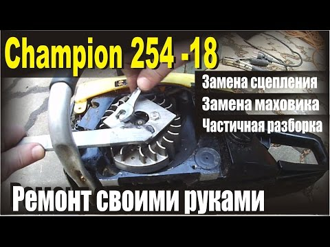 Бензопила Champion 254 Частичсная разборка бензопилы