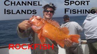 Channel Islands SportFishing: Catching Rockfish