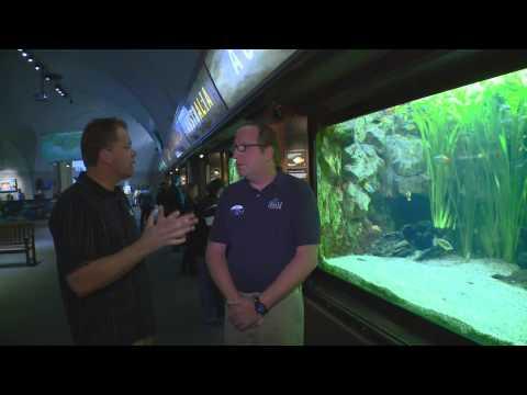 SHEDD Aquarium in Chicago - Rivers Gallery
