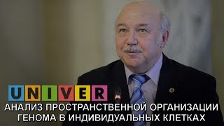 Сергей Разин. Анализ пространственной организации генома в индивидуальных клетках