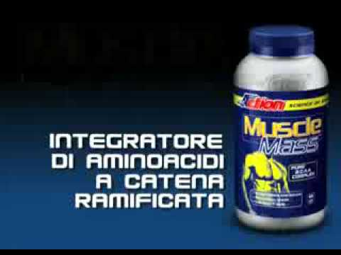 PROACTION - Muscle Mass