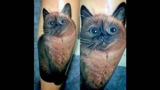 50 Cats Tattoo Designs & Ideas