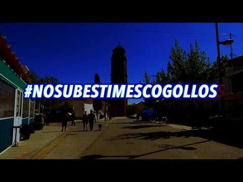 PROMO Fiestas Cogollos de Guadix 2018. Del 25 al 29 de Agosto. #NOSUBESTIMESCOGOLLOS