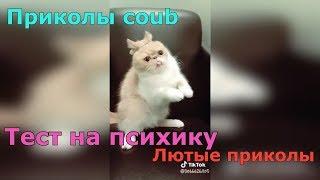 ТЕСТ НА ПСИХИКУ 2018 ПРИКОЛЫ COUB ЛЮТЫЕ ПРИКОЛЫ!