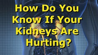 How Do You Know If Your Kidneys Are Hurting?