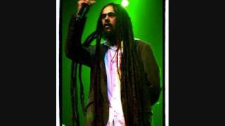 Born to be wild by Damian Marley