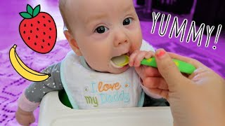 STARTING SOLIDS! (4 Months Old)