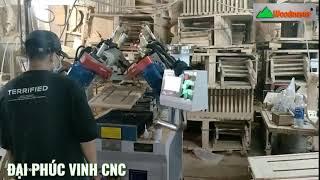 Máy cấy ốc vào tựa ghế | máy khoan cấy sò tự động Woodmaster