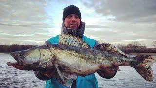 Ловля рыбы в москве реке поздней осенью 2020
