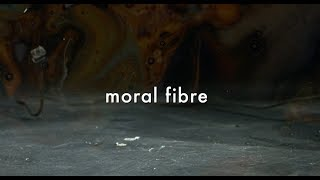 Gold Spectacles   Moral Fibre