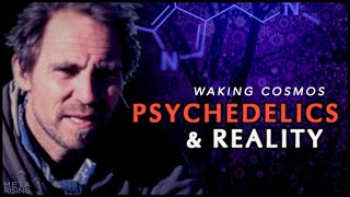 Picture of a podcast: Waking Cosmos