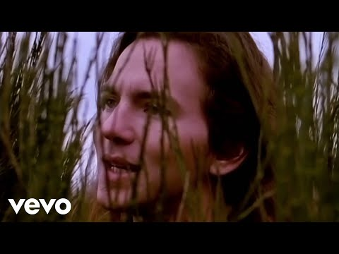 Temple Of The Dog - Hunger Strike (Official Music Video)