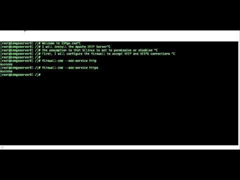 dedicated server hosting review # 1