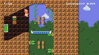 Haunted Castle by αCryω - Super Mario Maker 2 - No