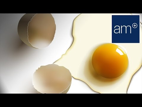 How Many Eggs Should You Be Eating Every Day | Thrive