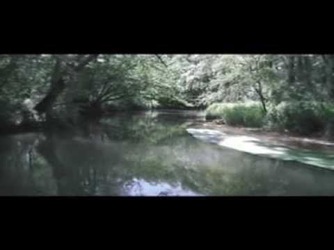 Quelle YouTube Veröffentlicht am 01.06.2012 von Ceromino69<br/>Äschen Besatz 2012 Fischereiverein Neuburg a.d. Donau