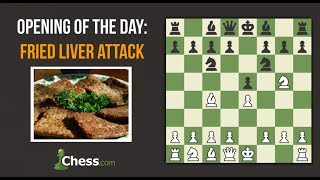 Fried Liver Attack | Chess Openings