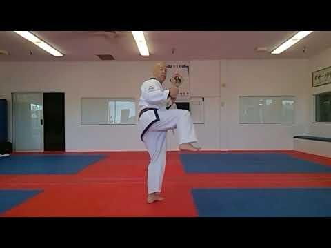 SBN James Pumarejo Tang Soo Do training class - YouTube