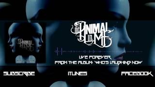"The Animal In Me - ""Live Forever"" (Album Stream)"