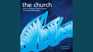 Ripple (Psychedelic Symphony Live at The Sydney Opera House)