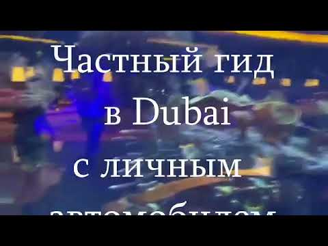 Фото видеогид Дубай молл (аквариум)