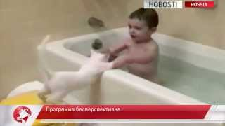 Коты бесполезны при спасении на воде