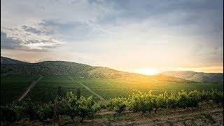 Chateau Sopot Macedonia - Gourmet Wine Travel - AMü - 0021