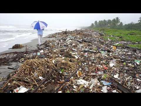 La isla de basura en el mar