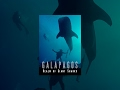 Documentary Nature - Galapagos: Realm of Giant Sharks